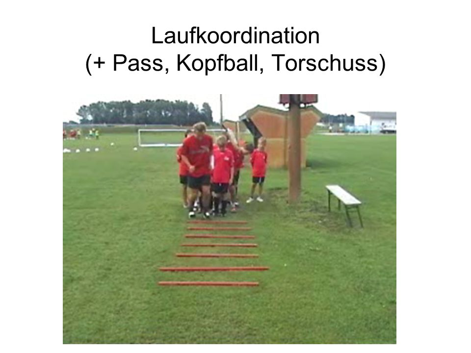 Laufkoordination (+ Pass, Kopfball, Torschuss)