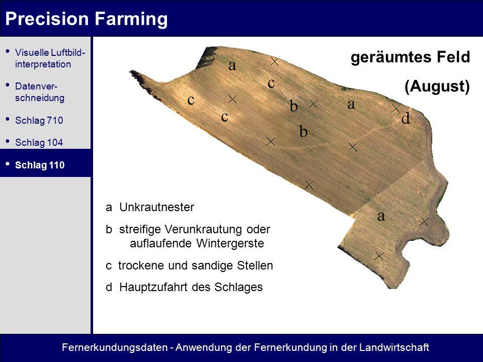 Fernerkundungsdaten - Anwendung der Fernerkundung in der Landwirtschaft Precision Farming geräumtes Feld (August) a Unkrautnester b streifige Verunkra