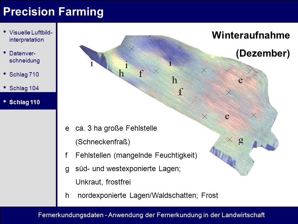 Fernerkundungsdaten - Anwendung der Fernerkundung in der Landwirtschaft Precision Farming Winteraufnahme (Dezember) e ca. 3 ha große Fehlstelle (Schne
