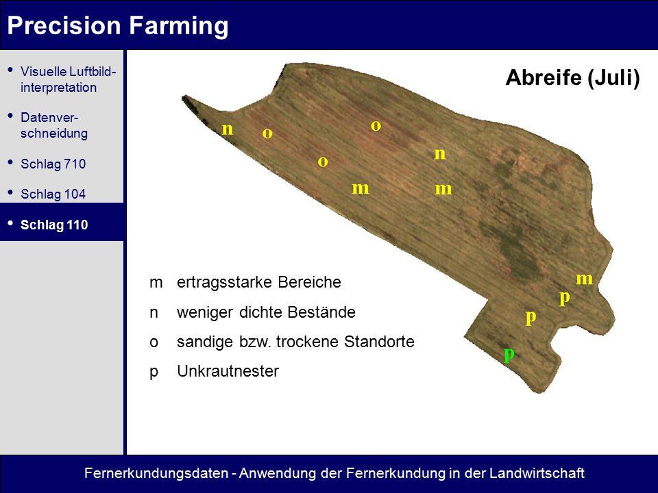 Fernerkundungsdaten - Anwendung der Fernerkundung in der Landwirtschaft Precision Farming Abreife (Juli) m ertragsstarke Bereiche n weniger dichte Bestände o sandige bzw.