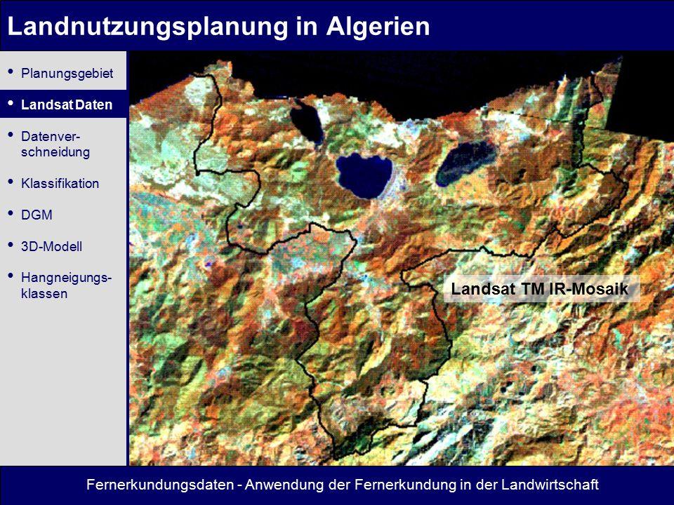 Fernerkundungsdaten - Anwendung der Fernerkundung in der Landwirtschaft Landnutzungsplanung in Algerien Landsat TM IR-Mosaik Planungsgebiet Landsat Da