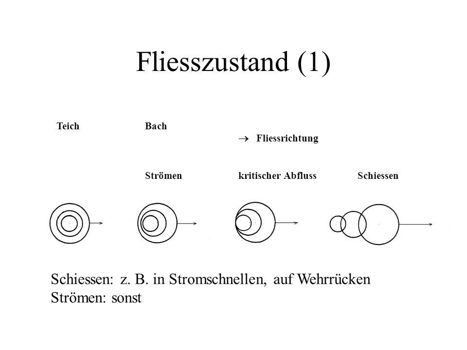 Fliesszustand (1) TeichBach  Fliessrichtung Strömenkritischer Abfluss Schiessen Schiessen: z. B. in Stromschnellen, auf Wehrrücken Strömen: sonst