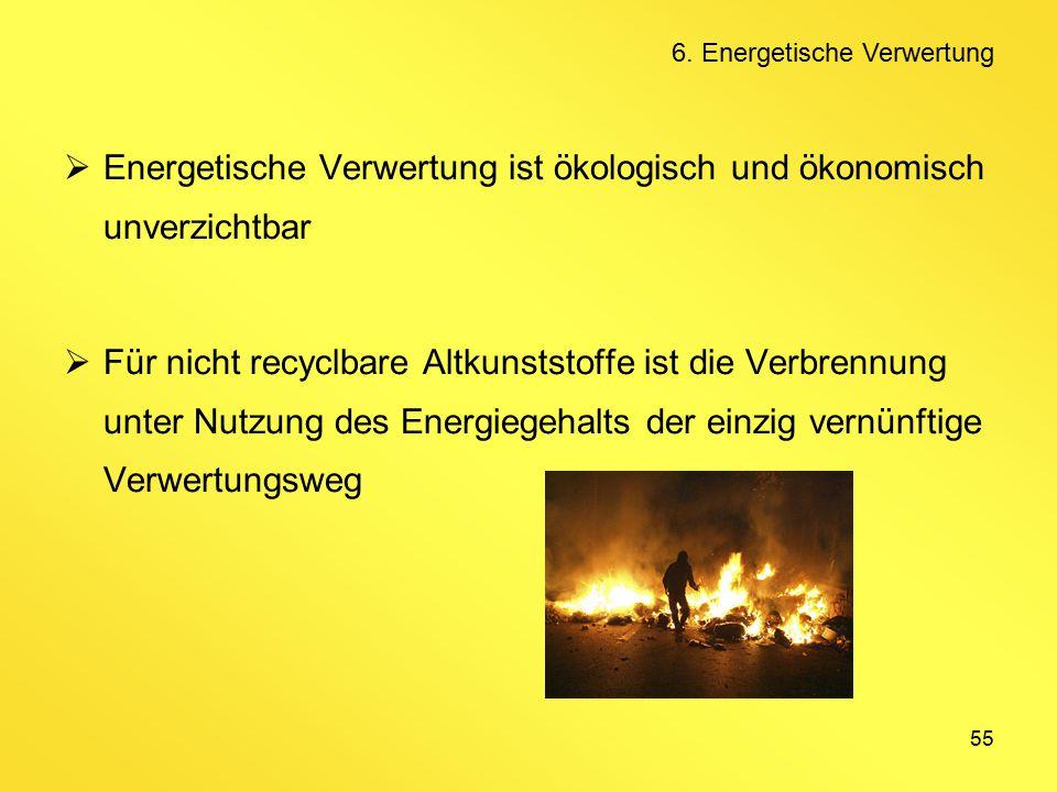 55  Energetische Verwertung ist ökologisch und ökonomisch unverzichtbar  Für nicht recyclbare Altkunststoffe ist die Verbrennung unter Nutzung des Energiegehalts der einzig vernünftige Verwertungsweg 6.