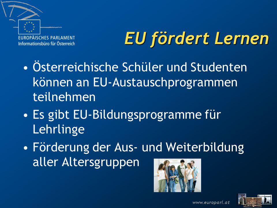 www.europarl.at EU fördert Lernen Österreichische Schüler und Studenten können an EU-Austauschprogrammen teilnehmen Es gibt EU-Bildungsprogramme für Lehrlinge Förderung der Aus- und Weiterbildung aller Altersgruppen
