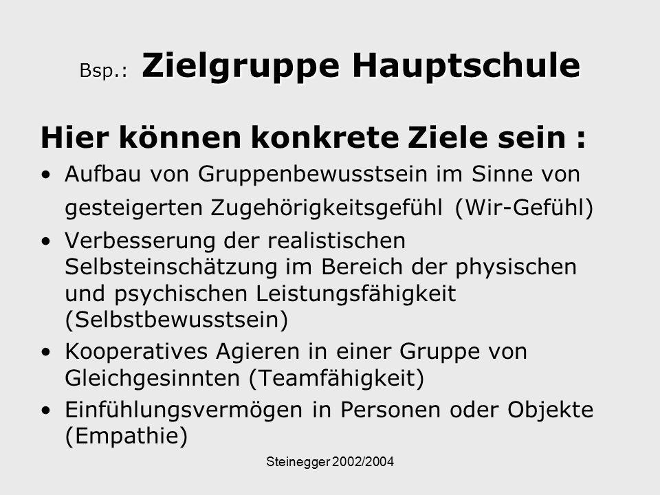 Steinegger 2002/2004 Bsp.: Zielgruppe Hauptschule Hier können konkrete Ziele sein : Aufbau von Gruppenbewusstsein im Sinne von gesteigerten Zugehörigk