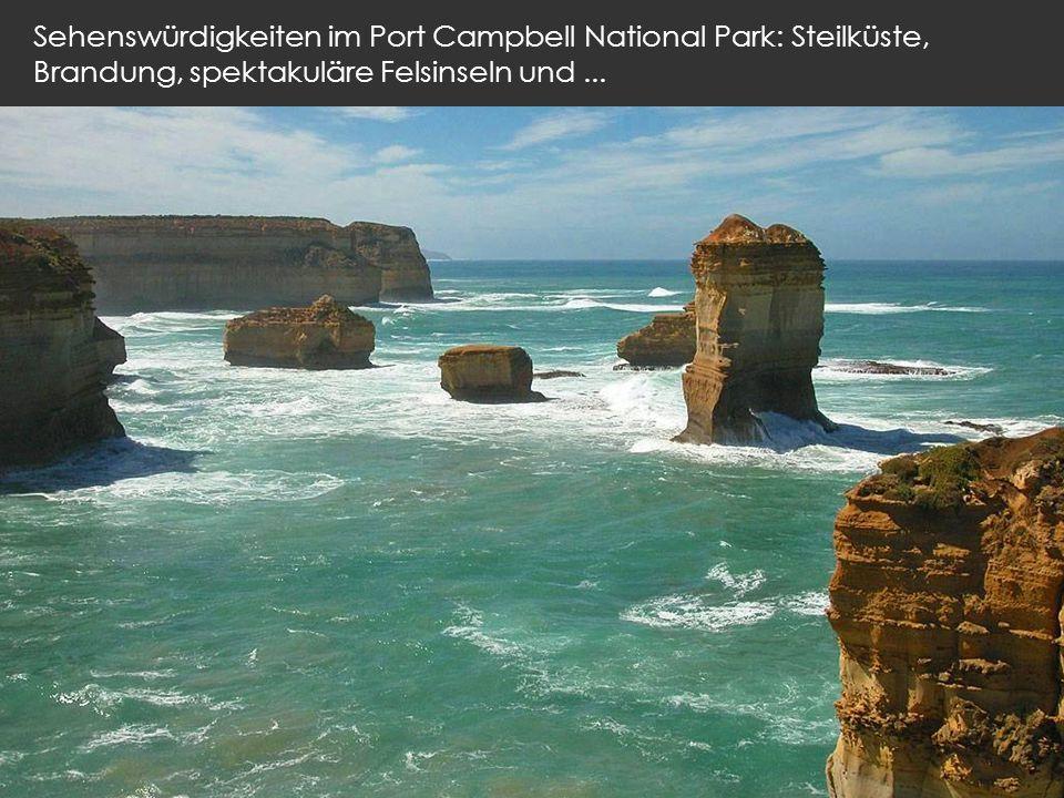 Sehenswürdigkeiten im Port Campbell National Park: Steilküste, Brandung, spektakuläre Felsinseln und...