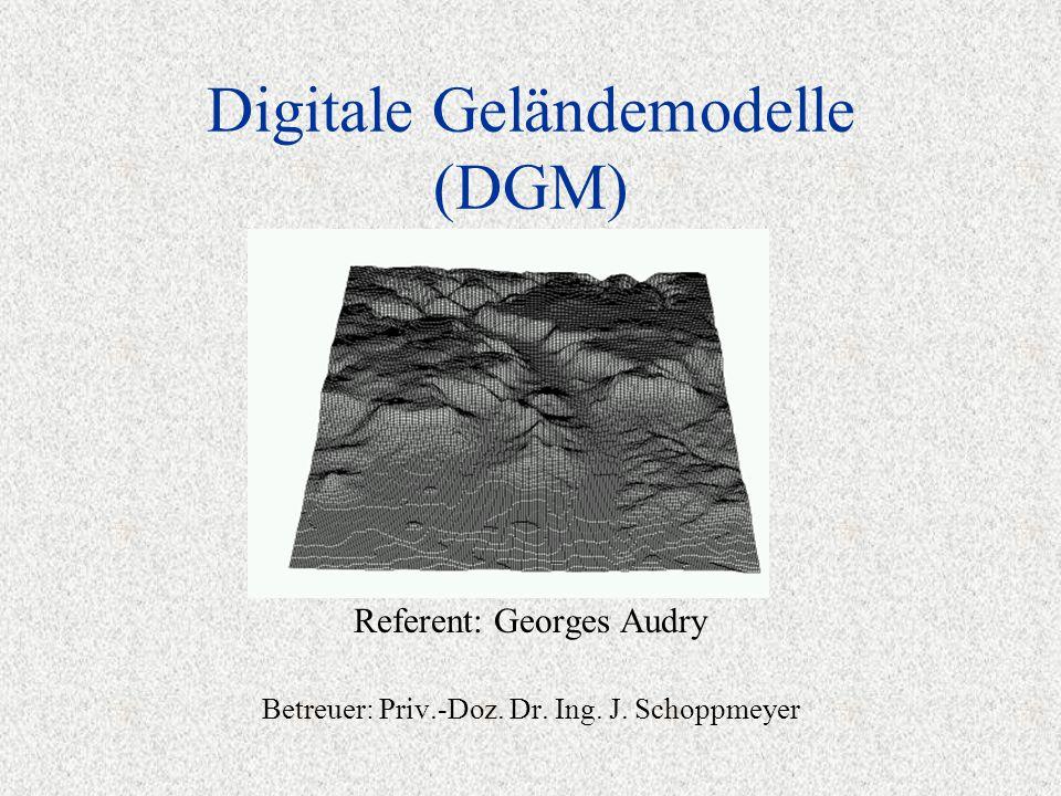 Digitale Geländemodelle (DGM) Referent: Georges Audry Betreuer: Priv.-Doz. Dr. Ing. J. Schoppmeyer