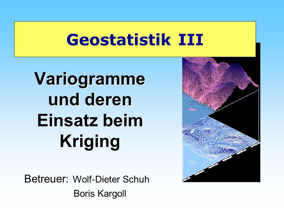 Variogramme und deren Einsatz beim Kriging Geostatistik III Betreuer: Wolf-Dieter Schuh Boris Kargoll Boris Kargoll