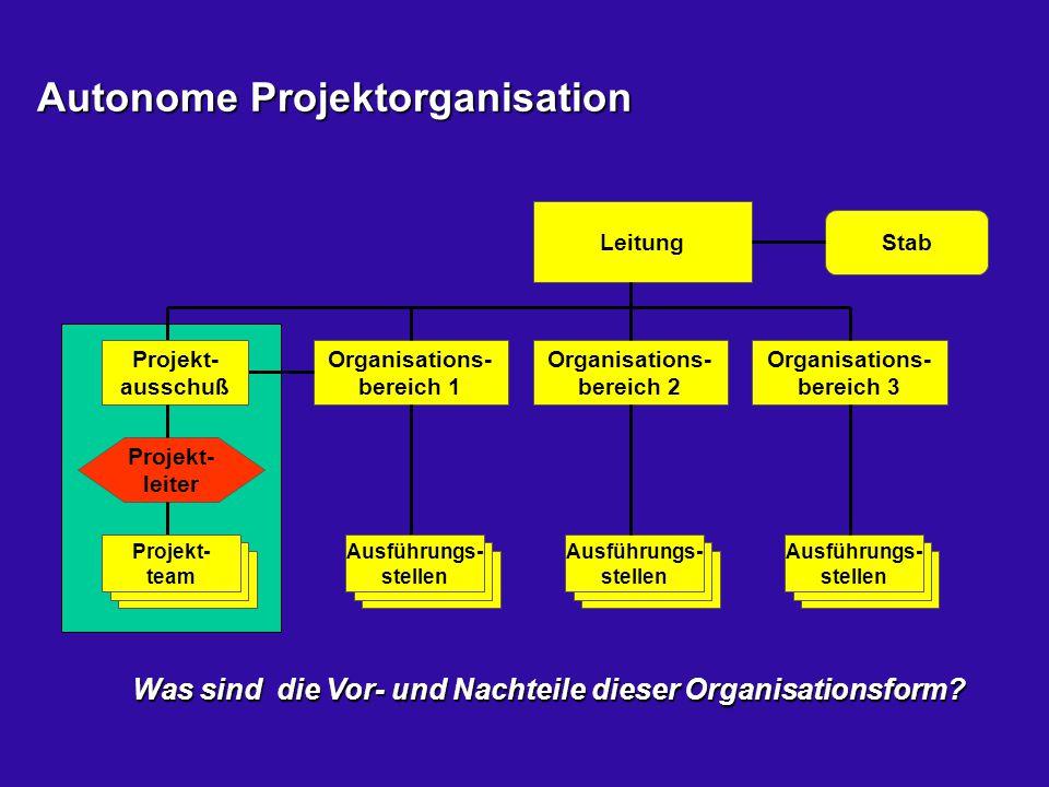 Autonome Projektorganisation Leitung Organisations- bereich 1 Organisations- bereich 2 Organisations- bereich 3 Ausführungs- stellen Stab Projekt- lei