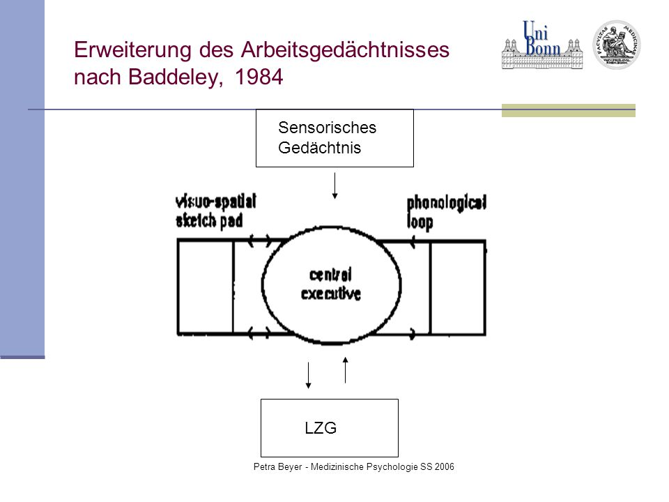 Petra Beyer - Medizinische Psychologie SS 2006 Erweiterung des Arbeitsgedächtnisses nach Baddeley, 1984 LZG Sensorisches Gedächtnis