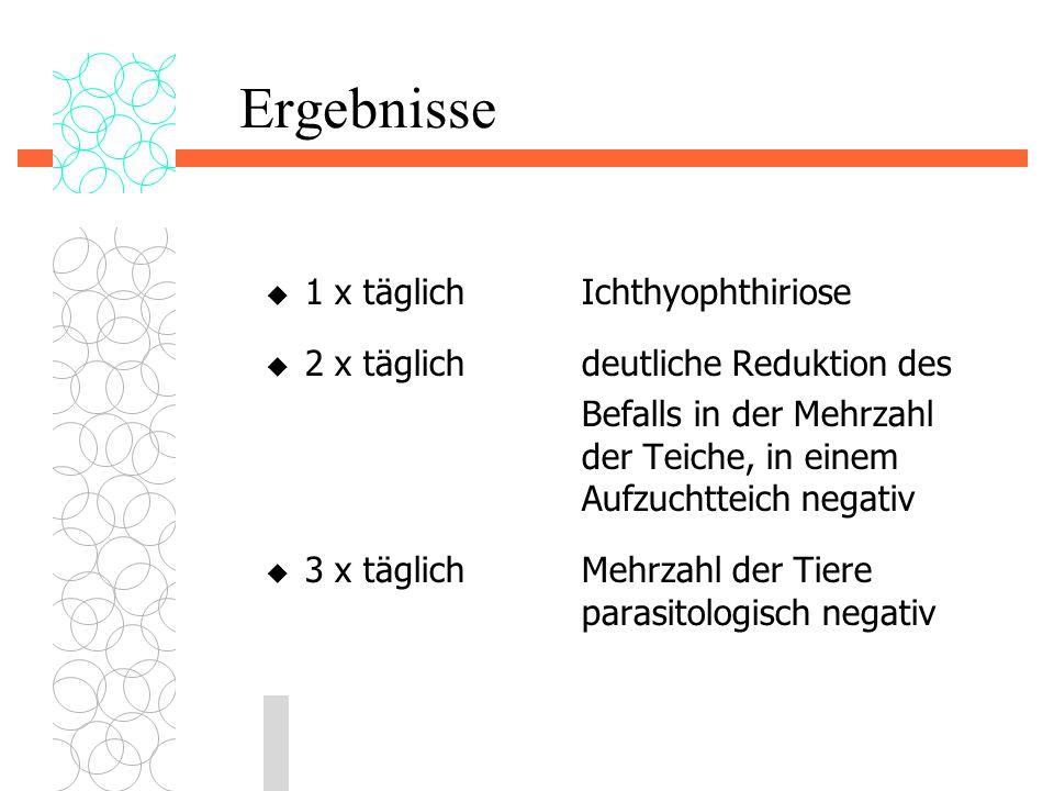 Ergebnisse  1 x täglichIchthyophthiriose  2 x täglichdeutliche Reduktion des Befalls in der Mehrzahl der Teiche, in einem Aufzuchtteich negativ  3