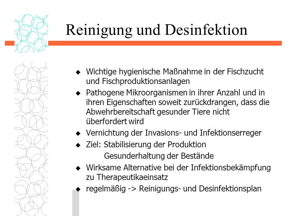 Reinigung und Desinfektion  Wichtige hygienische Maßnahme in der Fischzucht und Fischproduktionsanlagen  Pathogene Mikroorganismen in ihrer Anzahl u