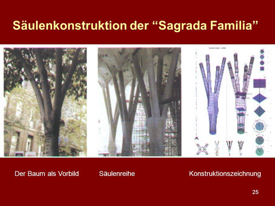 """25 Säulenkonstruktion der """"Sagrada Familia"""" Der Baum als VorbildSäulenreiheKonstruktionszeichnung"""