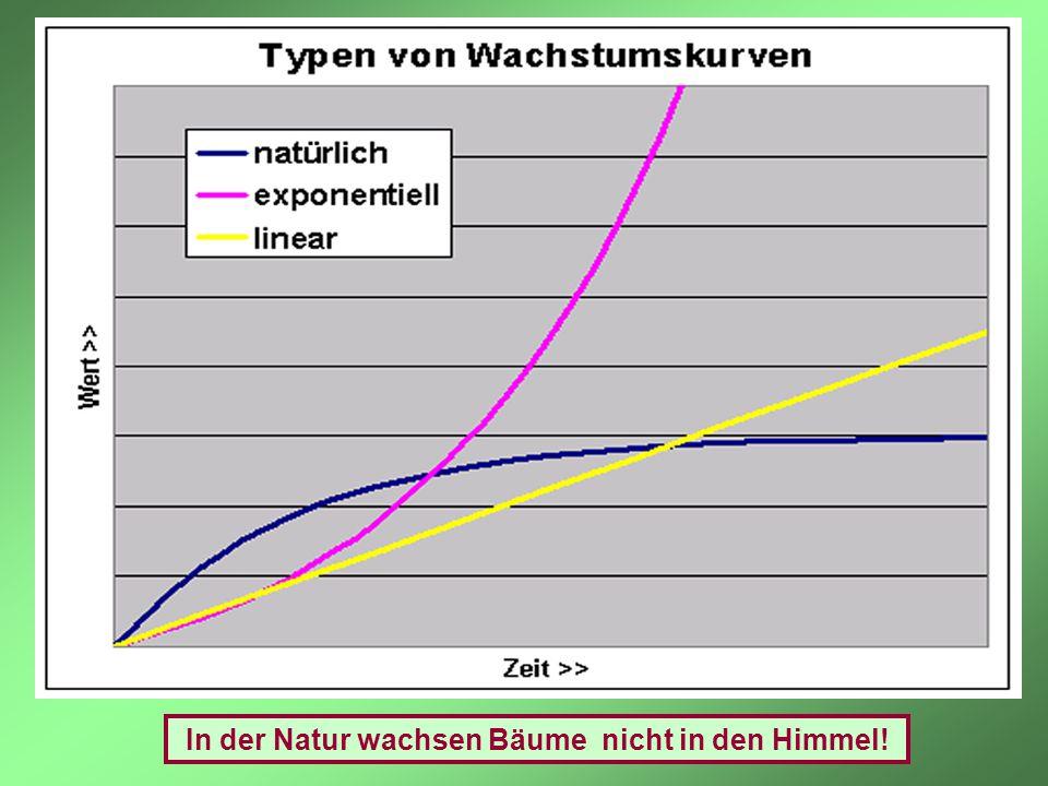 In der Natur wachsen Bäume nicht in den Himmel!