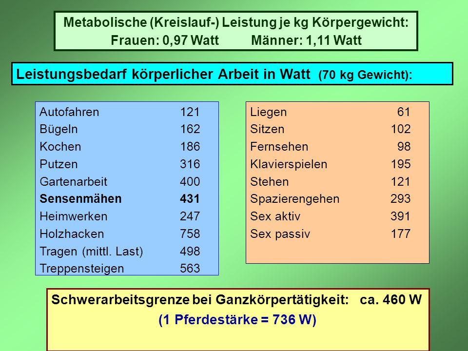 Leistungsbedarf körperlicher Arbeit in Watt (70 kg Gewicht): Autofahren121 Bügeln162 Kochen186 Putzen316 Gartenarbeit400 Sensenmähen431 Heimwerken247