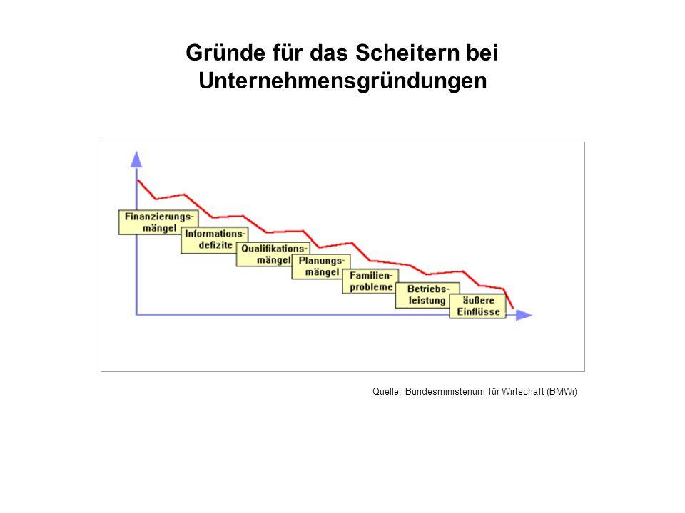 Gründe für das Scheitern bei Unternehmensgründungen Quelle: Bundesministerium für Wirtschaft (BMWi)