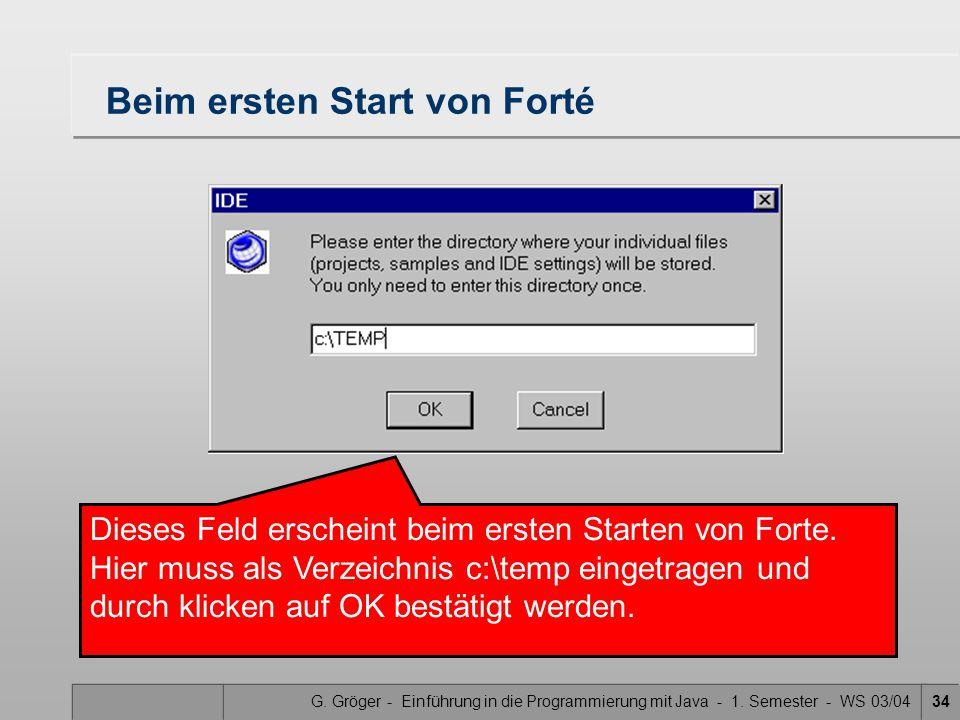 G. Gröger - Einführung in die Programmierung mit Java - 1. Semester - WS 03/0434 Dieses Feld erscheint beim ersten Starten von Forte. Hier muss als Ve