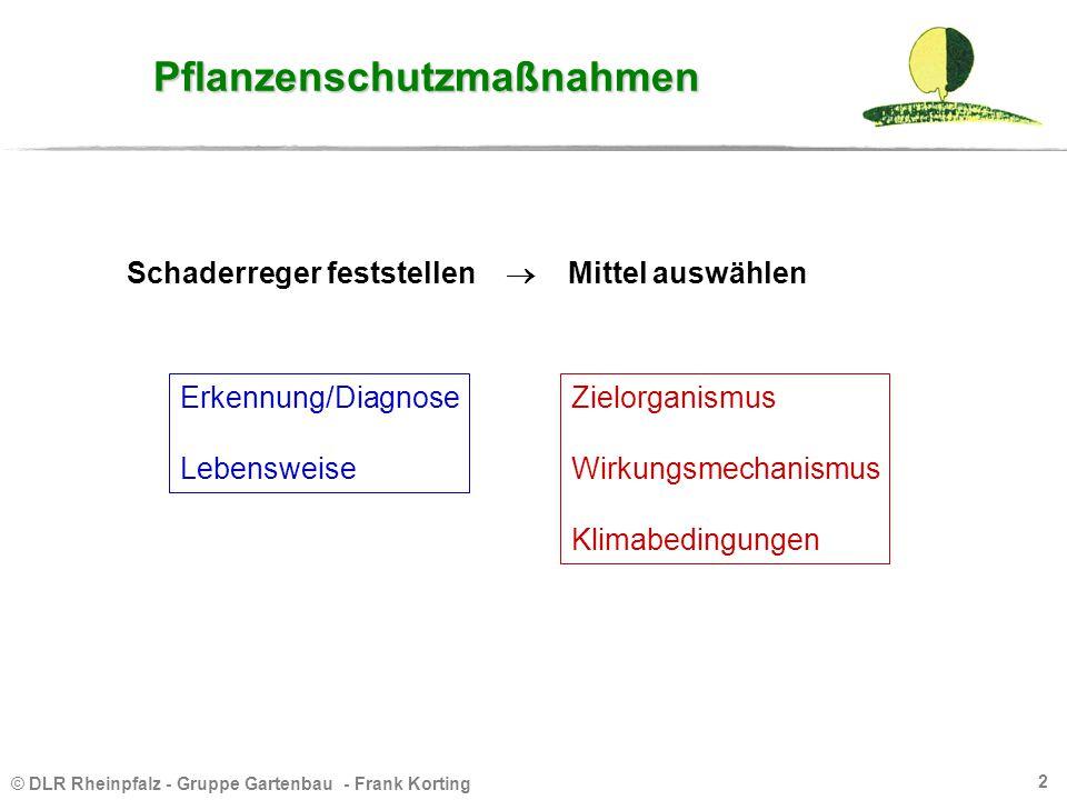 © DLR Rheinpfalz - Gruppe Gartenbau - Frank Korting 2 Pflanzenschutzmaßnahmen Schaderreger feststellen  Mittel auswählen Erkennung/Diagnose Lebenswei