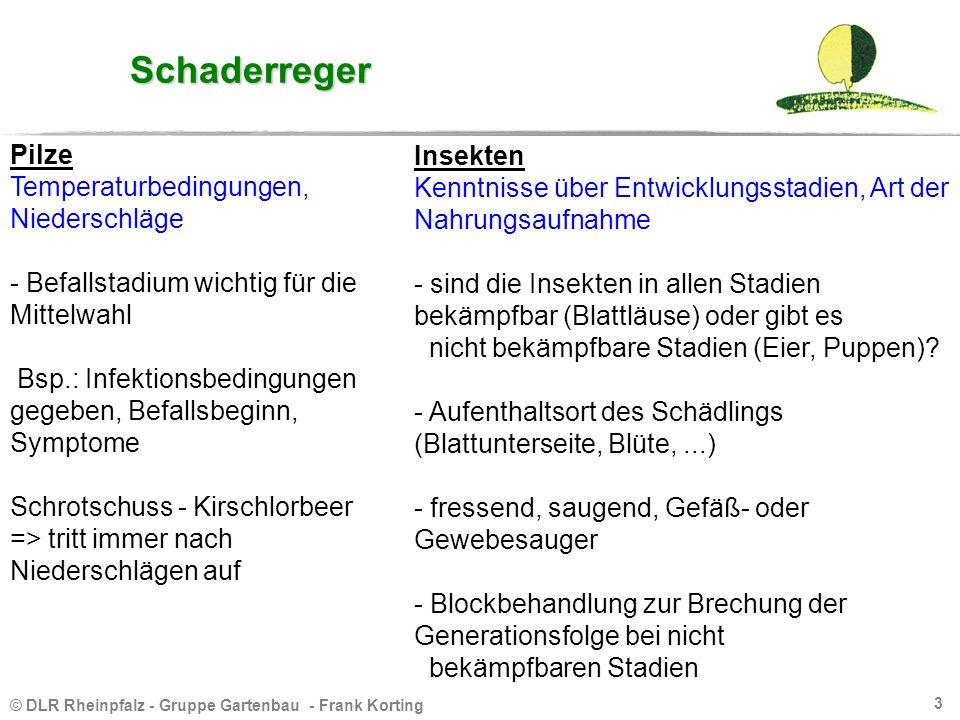 © DLR Rheinpfalz - Gruppe Gartenbau - Frank Korting 3 Schaderreger Pilze Temperaturbedingungen, Niederschläge - Befallstadium wichtig für die Mittelwa