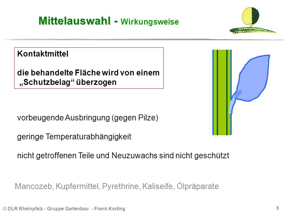 © DLR Rheinpfalz - Gruppe Gartenbau - Frank Korting 5 Mittelauswahl - Mittelauswahl - Wirkungsweise vorbeugende Ausbringung (gegen Pilze) geringe Temp