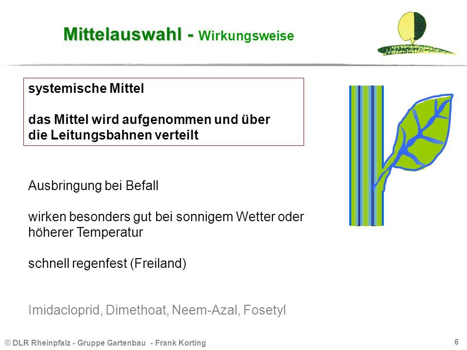 © DLR Rheinpfalz - Gruppe Gartenbau - Frank Korting 6 Mittelauswahl - Mittelauswahl - Wirkungsweise Ausbringung bei Befall wirken besonders gut bei so