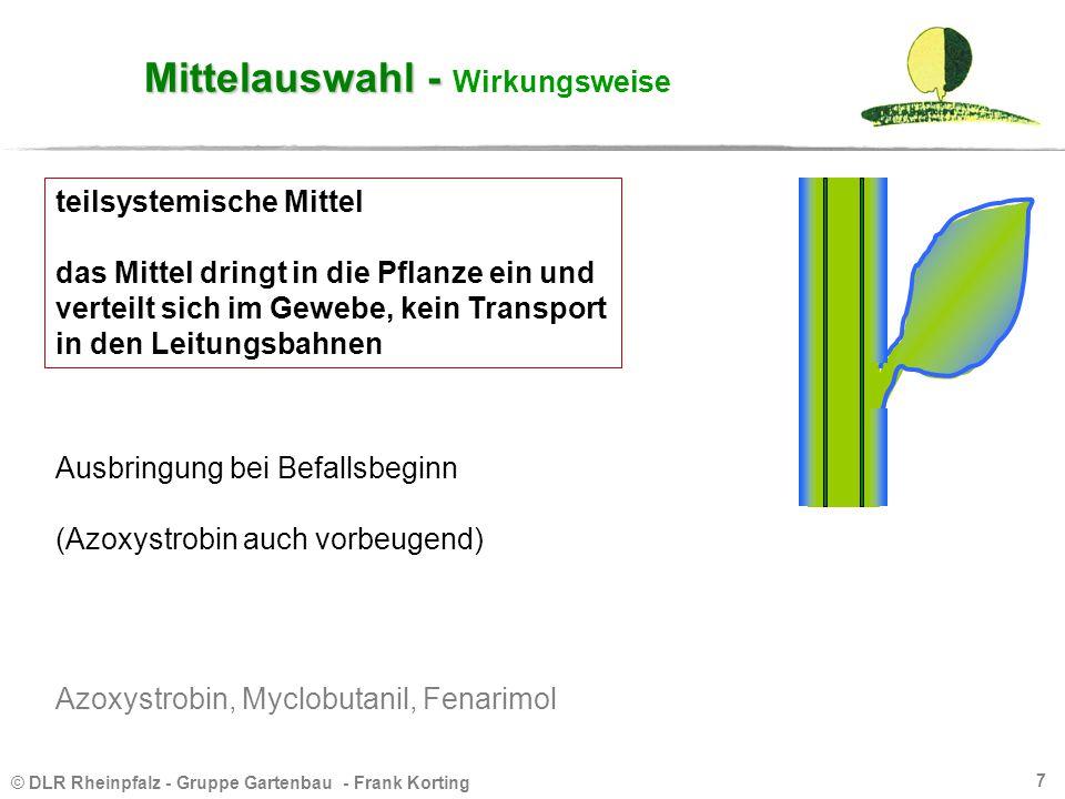 © DLR Rheinpfalz - Gruppe Gartenbau - Frank Korting 7 Mittelauswahl - Mittelauswahl - Wirkungsweise Ausbringung bei Befallsbeginn (Azoxystrobin auch v