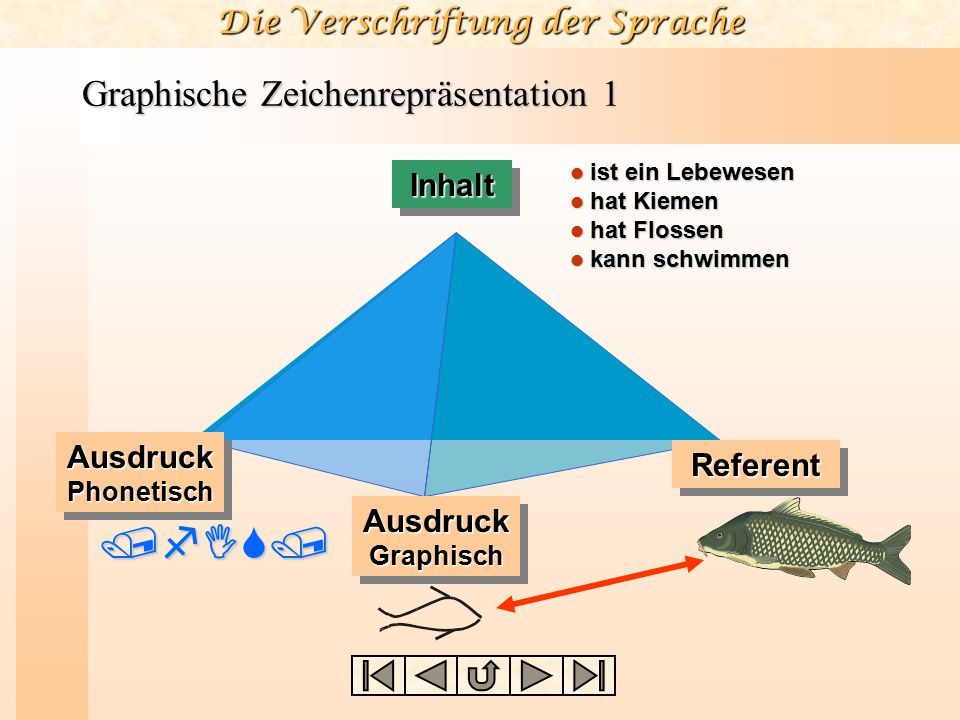 Die Verschriftung der Sprache Graphische Zeichenrepräsentation 1 ist ein Lebewesen ist ein Lebewesen hat Kiemen hat Kiemen hat Flossen hat Flossen kan