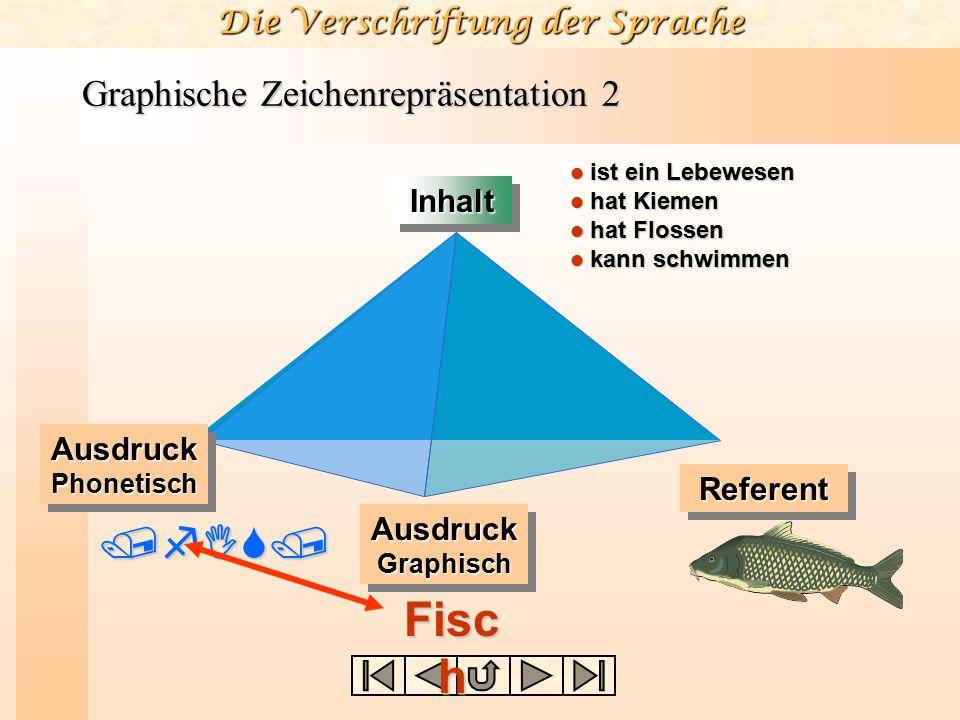 Die Verschriftung der Sprache Graphische Zeichenrepräsentation 2 /fIS/ InhaltInhalt ist ein Lebewesen ist ein Lebewesen hat Kiemen hat Kiemen hat Flos