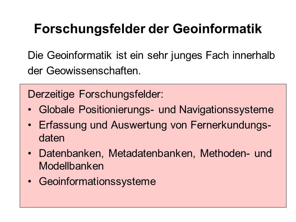 Forschungsfelder der Geoinformatik Die Geoinformatik ist ein sehr junges Fach innerhalb der Geowissenschaften. Derzeitige Forschungsfelder: Globale Po