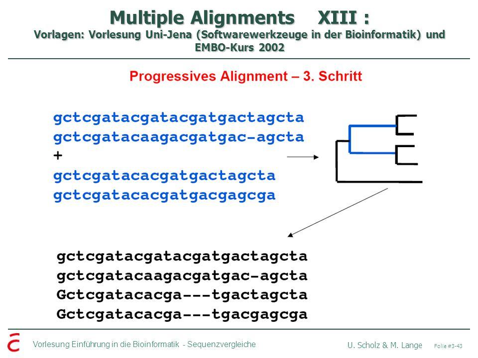 Vorlesung Einführung in die Bioinformatik - U.Scholz & M.