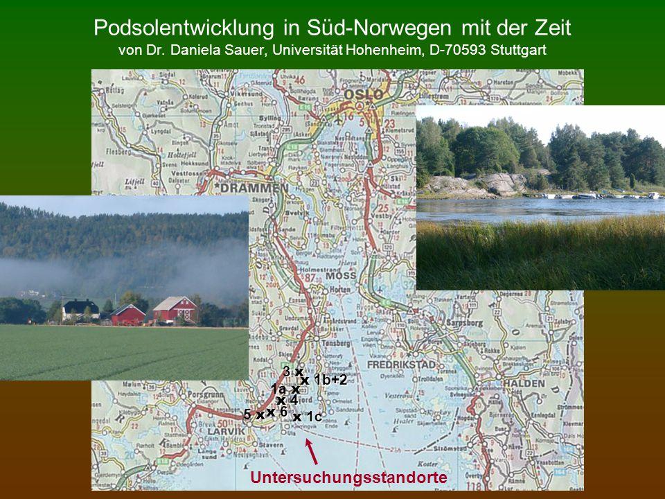 Podsolentwicklung in Süd-Norwegen mit der Zeit von Dr. Daniela Sauer, Universität Hohenheim, D-70593 Stuttgart x 1b+2 3x3 x3x3 x x5 x x5 x x 6 x 6x 6