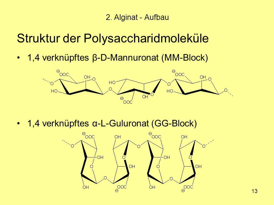 13 Struktur der Polysaccharidmoleküle 1,4 verknüpftes β-D-Mannuronat (MM-Block) 1,4 verknüpftes α-L-Guluronat (GG-Block) 2. Alginat - Aufbau