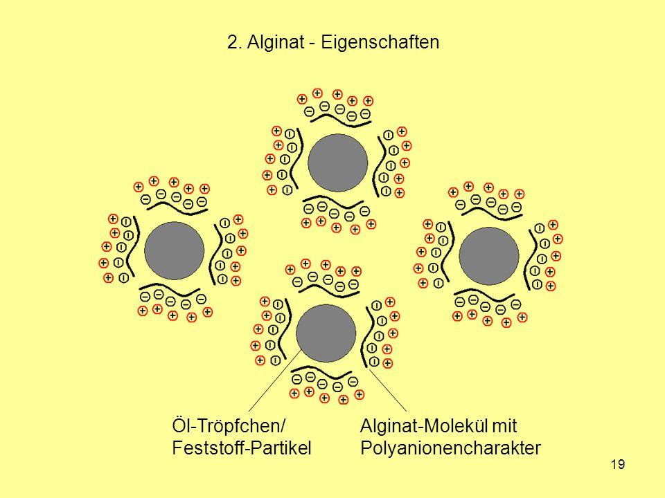 19 2. Alginat - Eigenschaften Öl-Tröpfchen/ Feststoff-Partikel Alginat-Molekül mit Polyanionencharakter