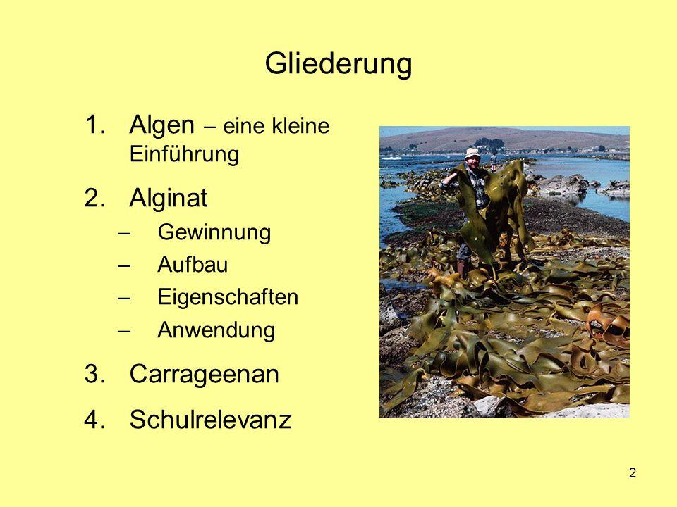 2 Gliederung 1.Algen – eine kleine Einführung 2.Alginat –Gewinnung –Aufbau –Eigenschaften –Anwendung 3.Carrageenan 4.Schulrelevanz