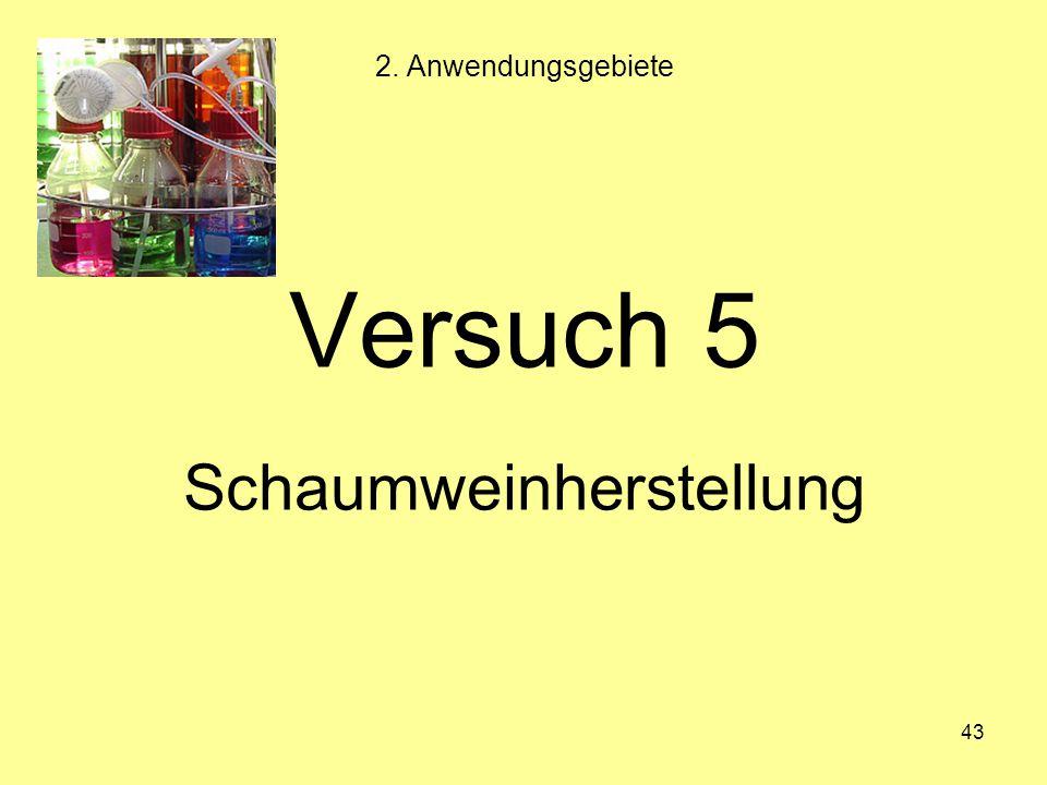 43 Versuch 5 Schaumweinherstellung 2. Anwendungsgebiete