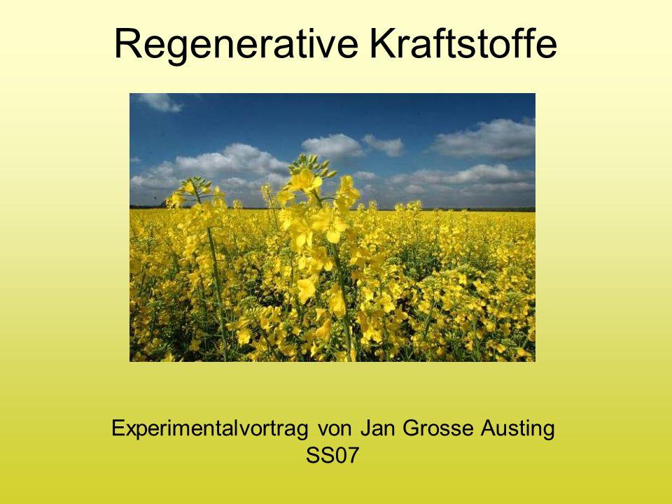 Regenerative Kraftstoffe Experimentalvortrag von Jan Grosse Austing SS07