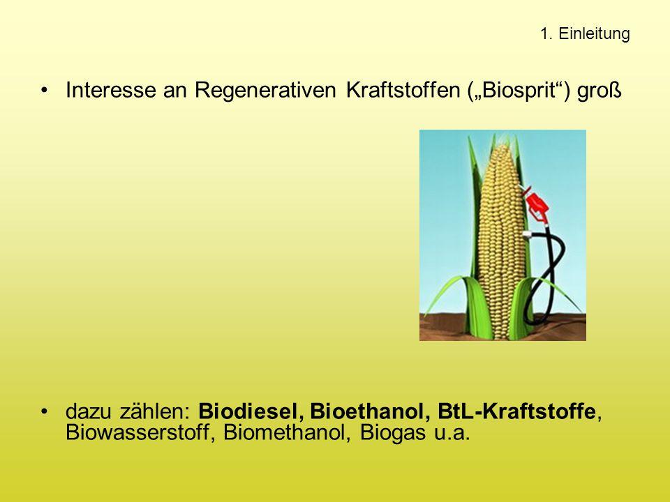 """Interesse an Regenerativen Kraftstoffen (""""Biosprit"""") groß dazu zählen: Biodiesel, Bioethanol, BtL-Kraftstoffe, Biowasserstoff, Biomethanol, Biogas u.a"""