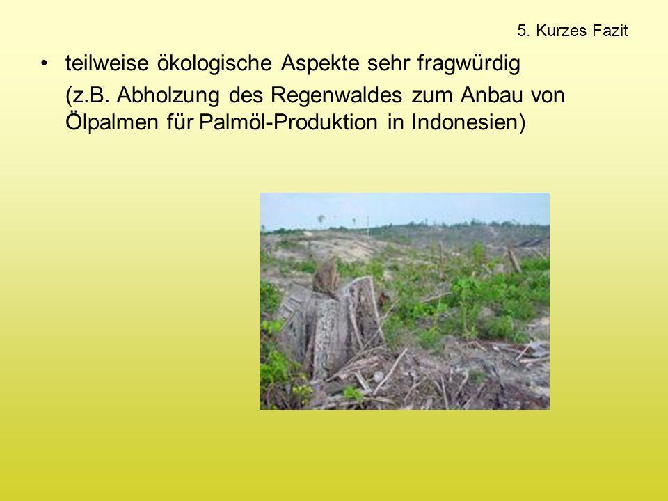 5. Kurzes Fazit teilweise ökologische Aspekte sehr fragwürdig (z.B. Abholzung des Regenwaldes zum Anbau von Ölpalmen für Palmöl-Produktion in Indonesi