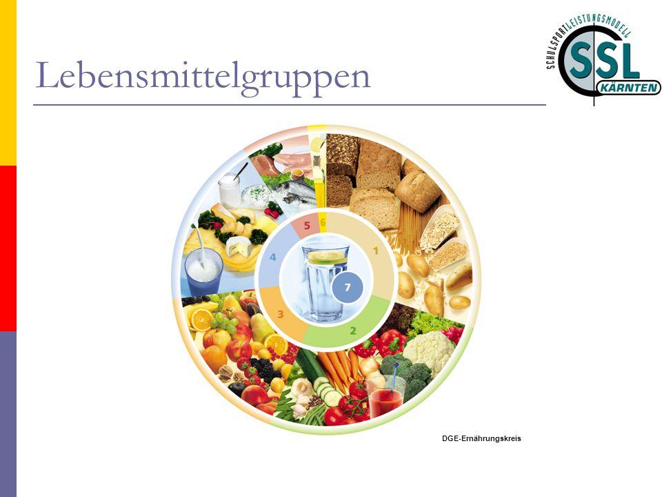 Lebensmittelgruppen DGE-Ernährungskreis