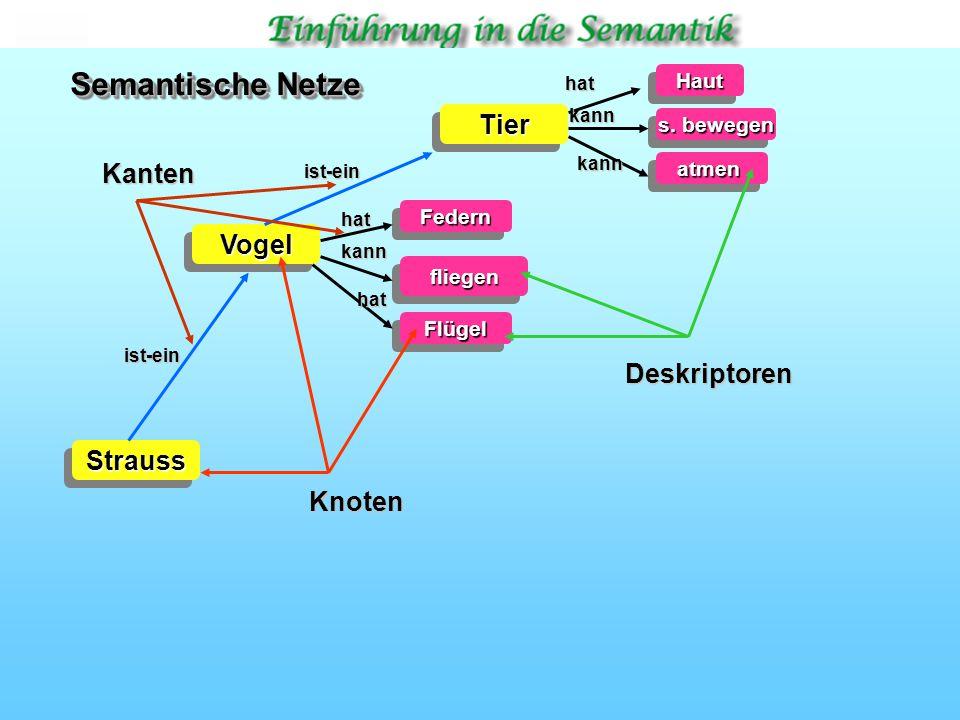 TierTier VogelVogel StraussStraussHautHaut s.