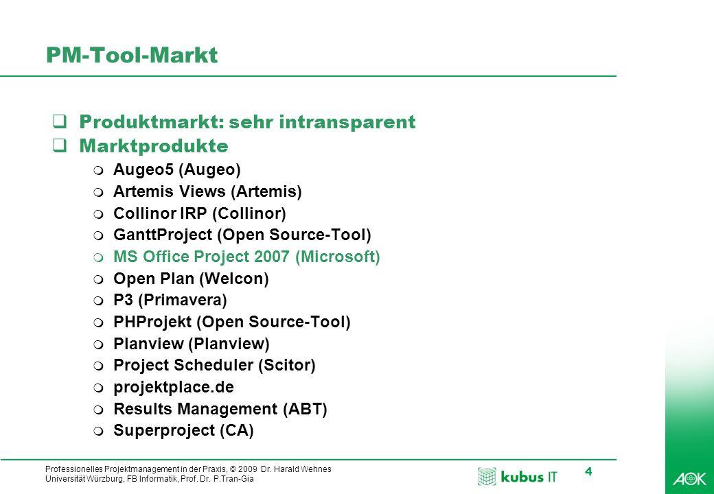 kubus IT Professionelles Projektmanagement in der Praxis, © 2009 Dr.