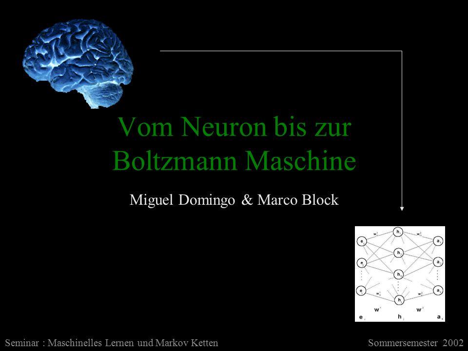 Vom Neuron bis zur Boltzmann Maschine Miguel Domingo & Marco Block Seminar : Maschinelles Lernen und Markov KettenSommersemester 2002