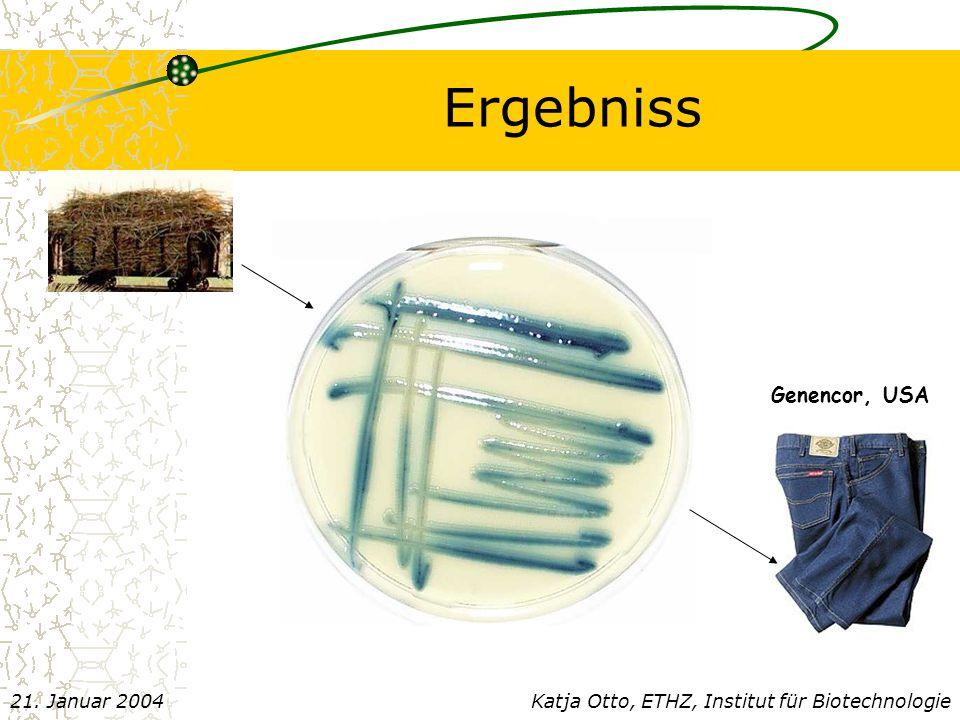 Ergebniss Genencor, USA Katja Otto, ETHZ, Institut für Biotechnologie21. Januar 2004