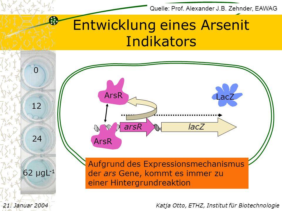 Entwicklung eines Arsenit Indikators arsR lacZ ArsR LacZ ArsR Aufgrund des Expressionsmechanismus der ars Gene, kommt es immer zu einer Hintergrundreaktion 0 12 24 62 µgL -1 Katja Otto, ETHZ, Institut für Biotechnologie21.
