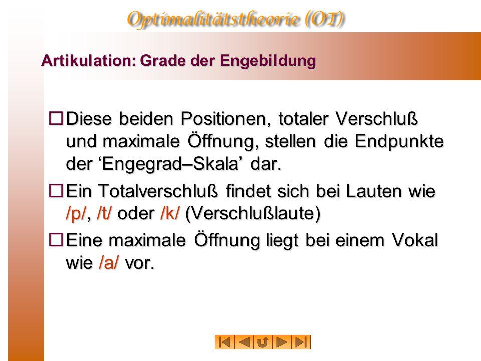 Artikulation: Grade der Engebildung  Diese beiden Positionen, totaler Verschluß und maximale Öffnung, stellen die Endpunkte der 'Engegrad–Skala' dar.