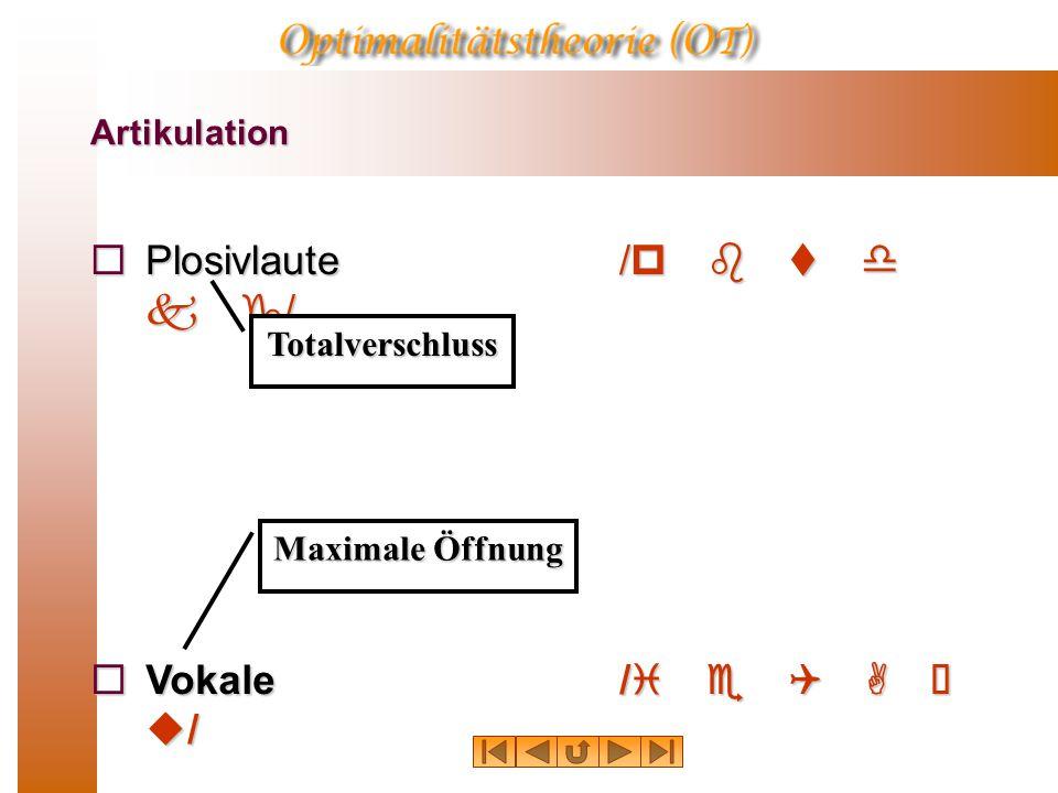 Artikulation  Plosivlaute/p b t d k g/  Vokale/i e Q A  u/ Totalverschluss Maximale Öffnung