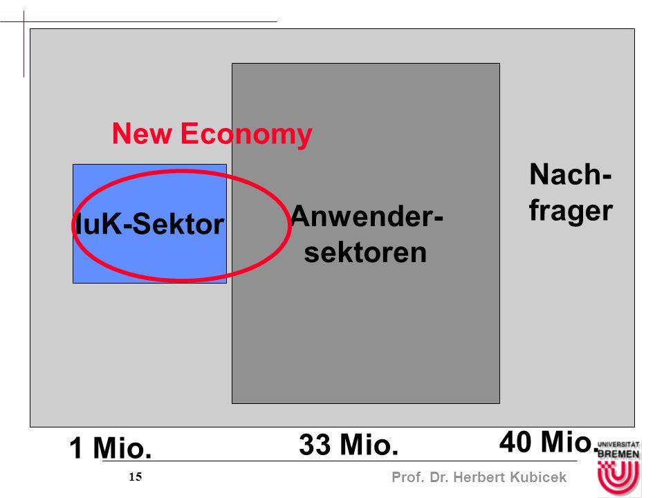 Prof. Dr. Herbert Kubicek 15 IuK-Sektor Anwender- sektoren New Economy Nach- frager 1 Mio. 33 Mio. 40 Mio.