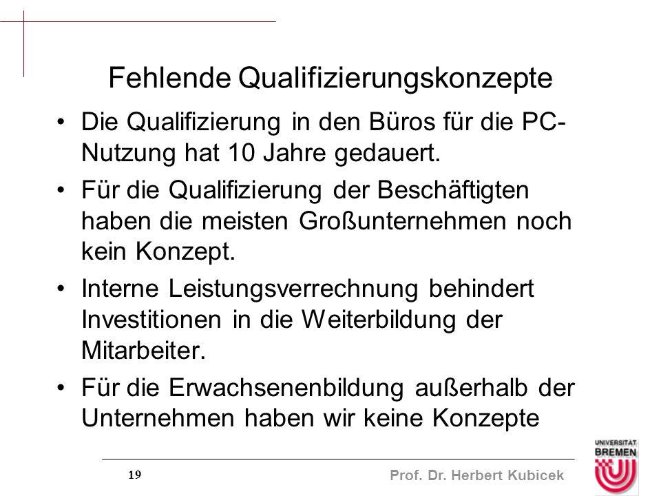 Prof. Dr. Herbert Kubicek 19 Fehlende Qualifizierungskonzepte Die Qualifizierung in den Büros für die PC- Nutzung hat 10 Jahre gedauert. Für die Quali