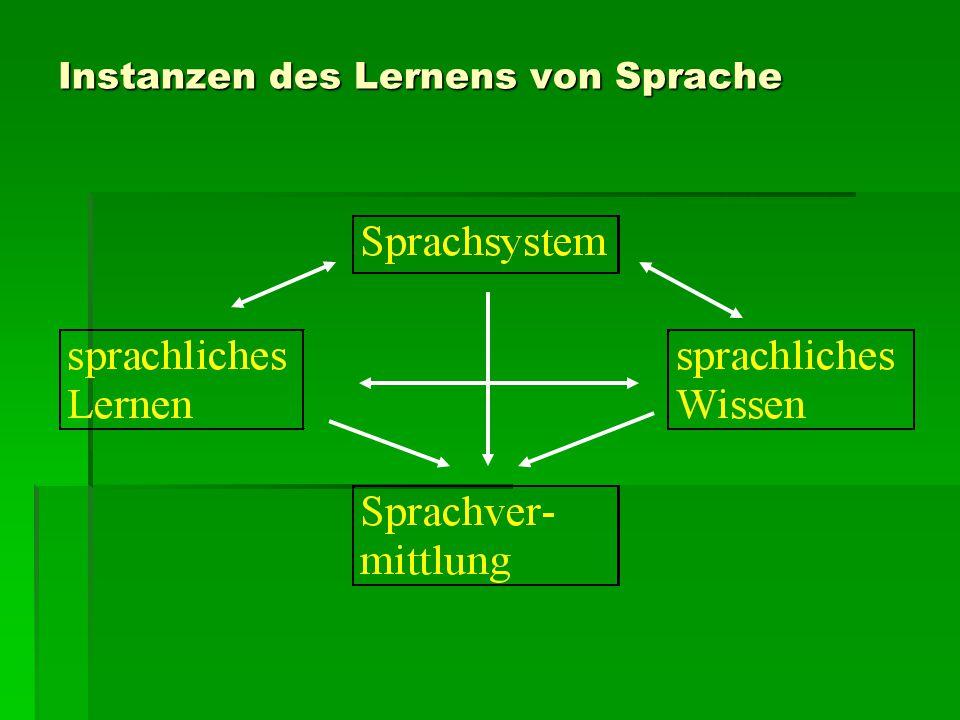Instanzen des Lernens von Sprache