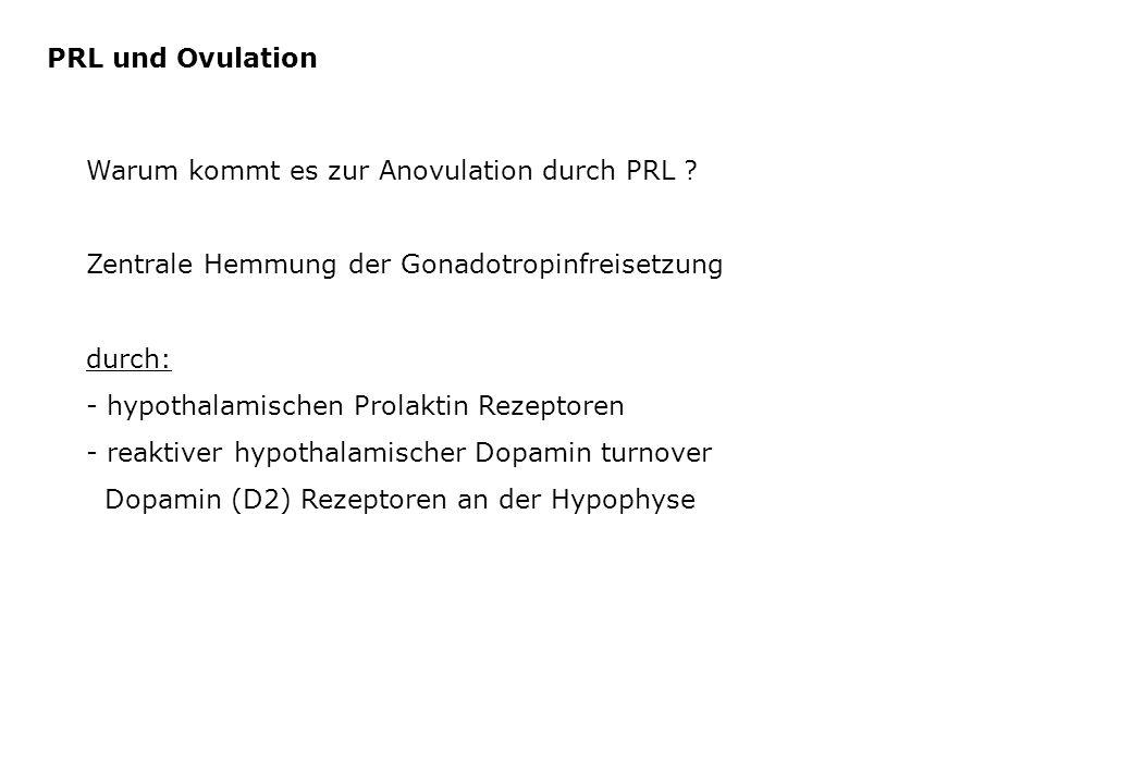 PRL und Ovulation Warum kommt es zur Anovulation durch PRL ? Zentrale Hemmung der Gonadotropinfreisetzung durch: - hypothalamischen Prolaktin Rezeptor